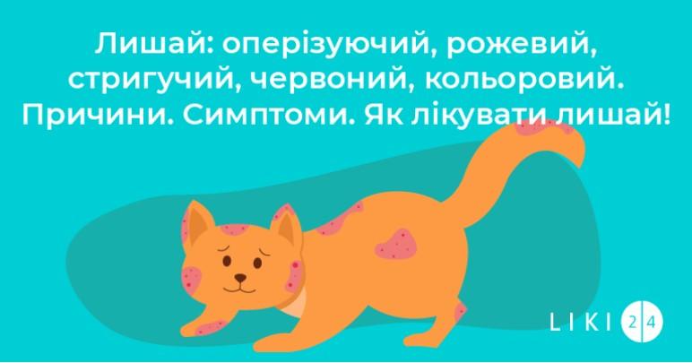 Лишай: оперізуючий, рожевий, стригучий, червоний, кольоровий. Причини. Симптоми. Як лікувати лишай