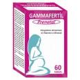 Гаммафертил Пренатал таблетки, №60