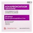 Кокарбоксилазы гидрохлорид р-р д/ин. 50 мг/2 мл амп., в блистерах №10